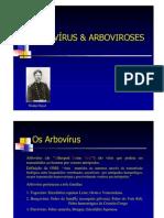 Arbovirus-dengue
