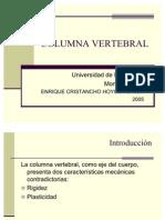 Columna vertebral (PPTshare)