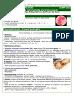 Fiche INTERNAT AEMIP Neisseria Meningitifis v2020