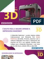 Operação MakerBot Flávio