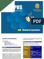 Requisitos Ago Dic 2010_CAMPUS IRAPUATO SALAMANCA_DIVISION DE INGENIERIAS_INGENIERÍAS - GUIA