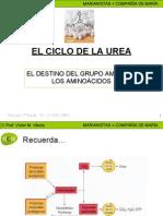 ciclodelaureamcm-100119050928-phpapp01