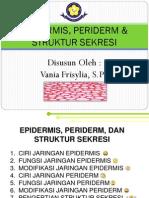 Bahan Ajar Epidermis, Periderm, & Struktur Sekresi Vania F.,S.Pd