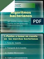 Marchas bacteriol gicas