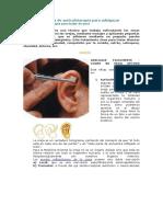 Puntos de auriculoterapia para adelgazar