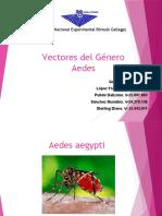 Vectores Del Género Aedes