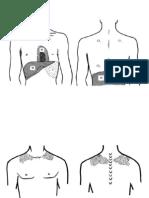 Percusión y Auscultación Pulmonar