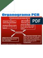 Organograma PCR