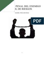 Derecho penal del enemigo y control de riesgos