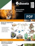 DIVERSIDADE BIOLOGICA 10º ano