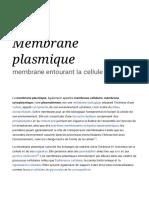 Membrane Plasmique — Wikipédia