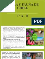 Flora y fauna de Chile