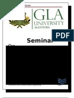 Seminar Report_2003