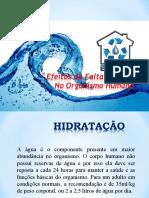 Importancia de agua no Organismo