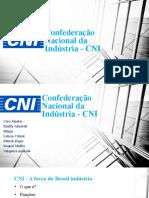 CNI (Principal)