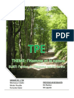 tpe_foret