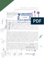Carta propuesta creación Grupo Parlamentario Plural.