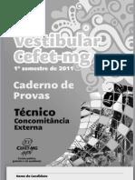 Tecnico_Concomitancia_Externa