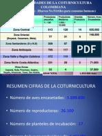 seminario_codorniz_p2
