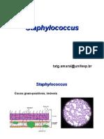 31787591-Microbio-Staphylococcus-Pseudomonas-2008-Tania1