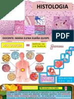 Ceprunsa 5 Histologia Oseo Interaccion
