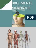 Bases Biológicas de La Psicologia Complemento 2020