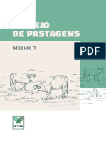 20190207 Manejo de Pastagens M1 Apostila V4