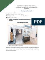 Ejemplos de Museografía tradicional y all'aperto