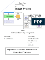 Expert Systems Characteristics