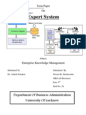 Expert Systems Characteristics Software Development Expert