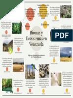 Biomas y Ecosistemas en Venezuela