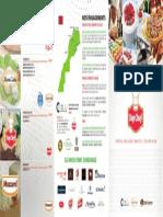 Brochure Recto (1)
