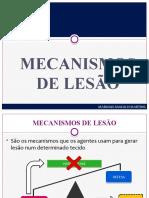 MECANISMOS DE LESÃO