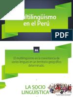 Clase 6 Multilinguismo