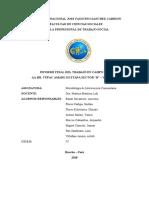 INFORME FINAL DE LA INTERVENCION EN EL AAHH TÚPAC AMARU III ETAPA – SECTOR BChris