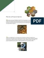 Plan de un Proyecto Apícola