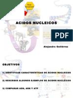 ácidos nucleicos gutierrez