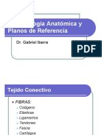 2 TERMINOLOGIA ANATOMICA Y PLANOS DE REFERENCIA