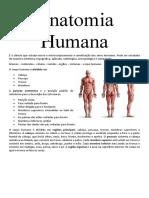 Anatomia Humana (Introdução)