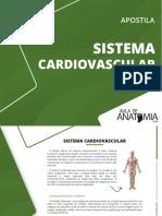 1629831328Aula_de_Anatomia_-_Sistema_Cardiovascular