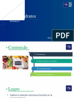 Usil - QA -s5-Carbohidratos