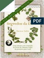 E-BOOK GRÁTIS Seleção de Segredos da Dinda de Theresa Tullio