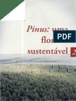 02_Pinus_uma_floresta_sustentavel