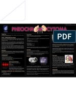 Pheochromocytoma Poster FINAL