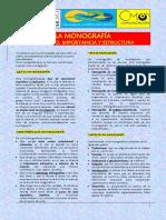 S08 LA MONOGRAFÍA