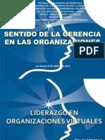Liderazgo en Organizaciones Virtuales