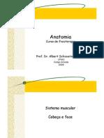 Aula 9 - Sistema Muscular - Cabe%e7a e Face