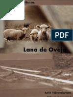 lana de oveja. karen troncoso