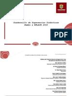 Cuadernillo de Sugerencias Didacticas Enlace 2009