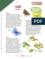 KV-NL-2021-07-Insekten_interaktiv